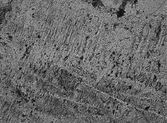 PDFs Schockeffekt Tüttensee-Krater