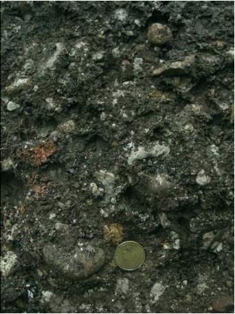 Archäologische Ausgrabung Chieming Stöttham Diamiktit Brekzie Katastrophenschicht Impaktschicht