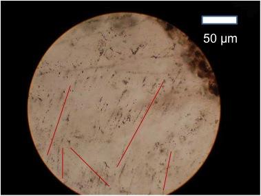 Archäologische Ausgrabung Chieming Stöttham Diamiktit planare Deformationsstrukturen PDFs