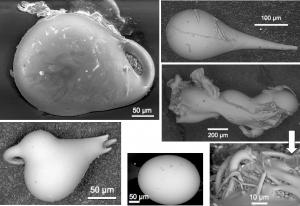 Rasterelektronenmikroskop-Mikrotektit-Chiemgau-Impakt