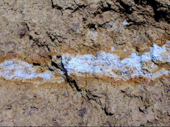 Baggerschurf LfU Liquefaktion Bodenverflüssigung injizierter Gang mit Salband in Brekzie
