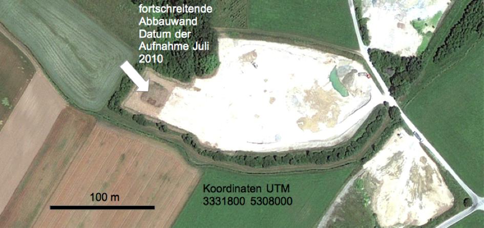 Kiesgrube Eglsee Tsunami-Aufschluss Google Earth