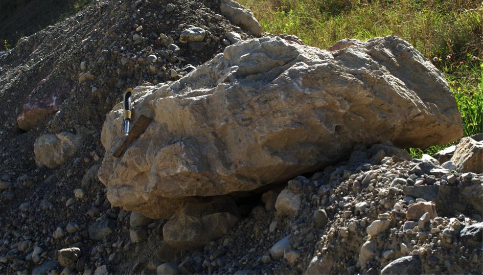Kalkstein-Block Chiemsee Tsunami-Ablagerung mit Diamiktit-Kreuzschichtung