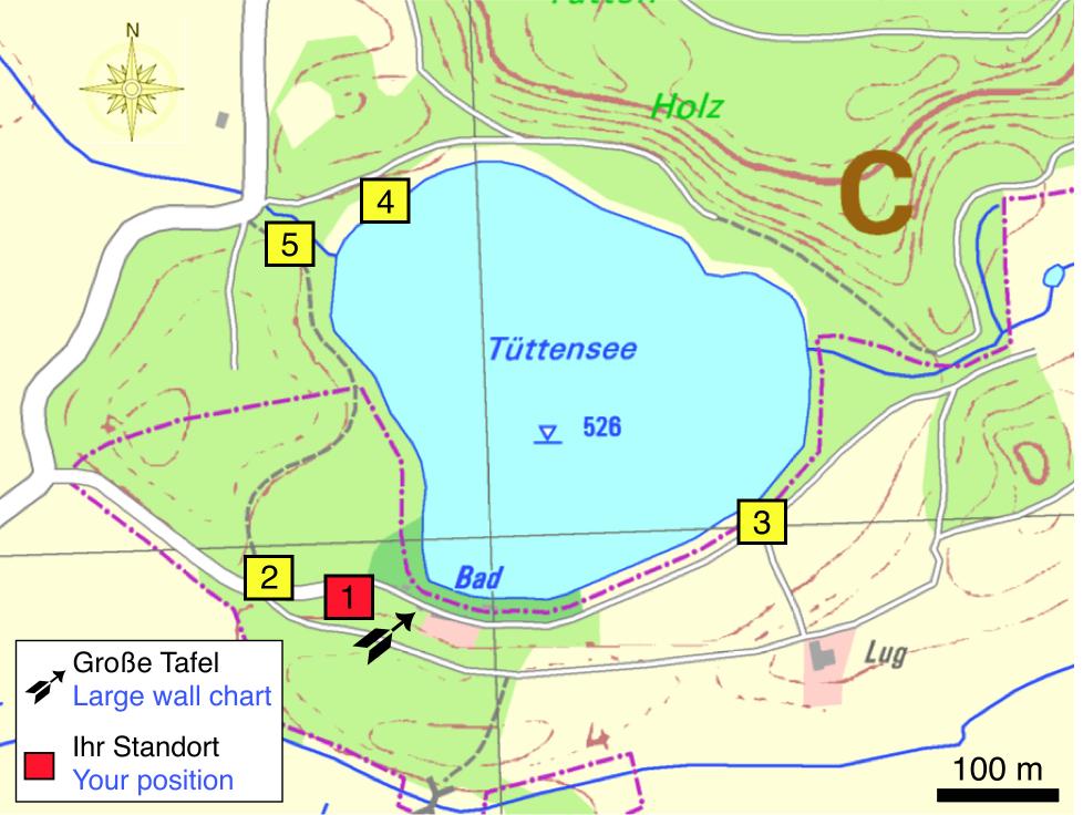 Tüttensee-Meteoritenkrater Impakt-Wanderweg 4